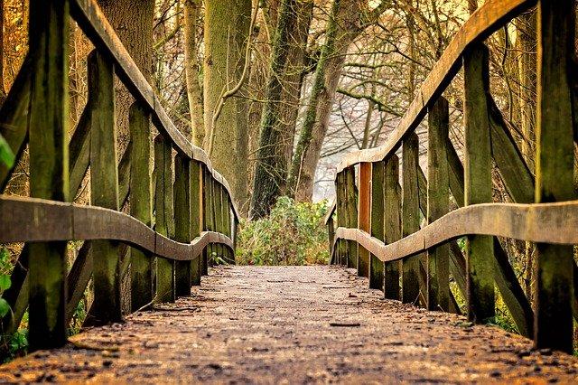 most pro pěší.jpg